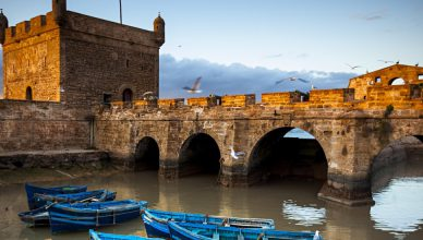 tours from marrakech to essaouira